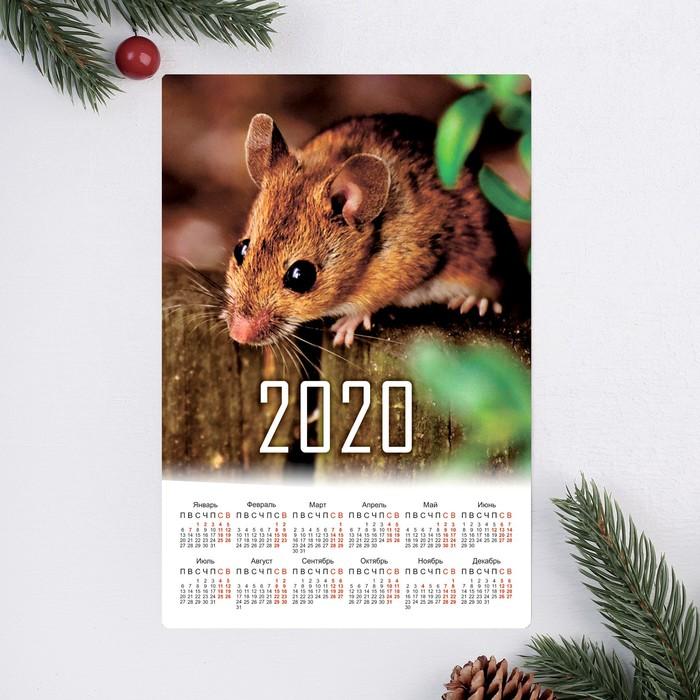 """Календарь-магнит """"Мандарин"""" 12х8см"""