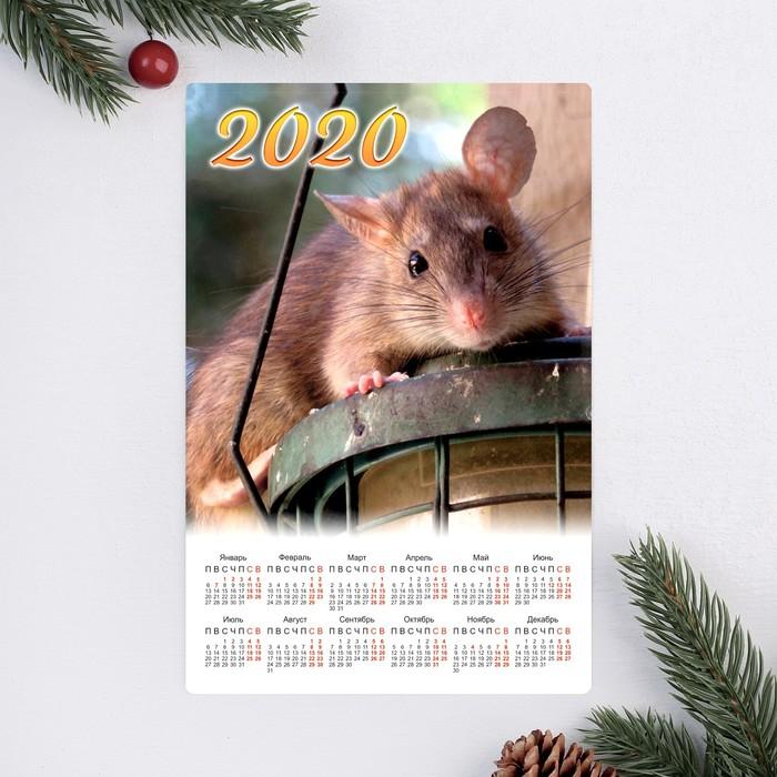 """Календарь-магнит """"Два поросёнка"""" 2019 год, 12х18см"""