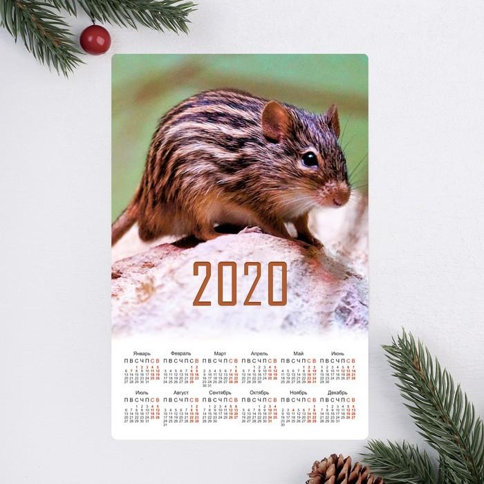 """Календарь-магнит """"Поросёнок с цветами"""" 2019 год, 12х18см"""