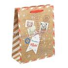 Пакет крафтовый вертикальный «Новогодняя посылка», 12 × 15 × 5,5 см