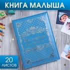 """Книга малыша для мальчика """"Наследник семьи"""": 20 листов"""