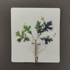 Крючок-наклейка «Растения», рисунок МИКС - фото 284499448