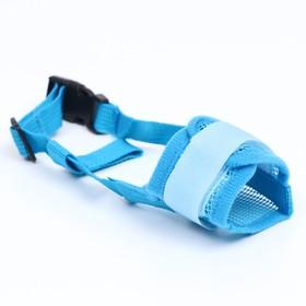 Намордник сетчатый с двойной фиксацией, размер S, голубой