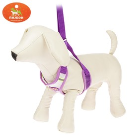 The adjustable harness breathable, reflective, size S, purple