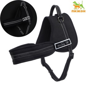 The harness with lining, size S, lanyard 2,5 cm black