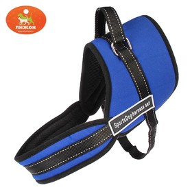 The harness with lining size XL (OSH 68, OG 68-86 cm) webbing 2.5 cm, blue