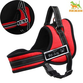 The harness lining, size XS (OSH 45, OG 48-56 cm) lanyard 2,5 cm red