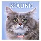 """Календарь на скрепке """"Кошки"""" 2019 год, 23х23см"""