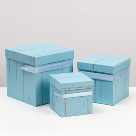 3in1 set boxes, Teal, 20 x 20 x 20 and 13 x 13 x 13 cm