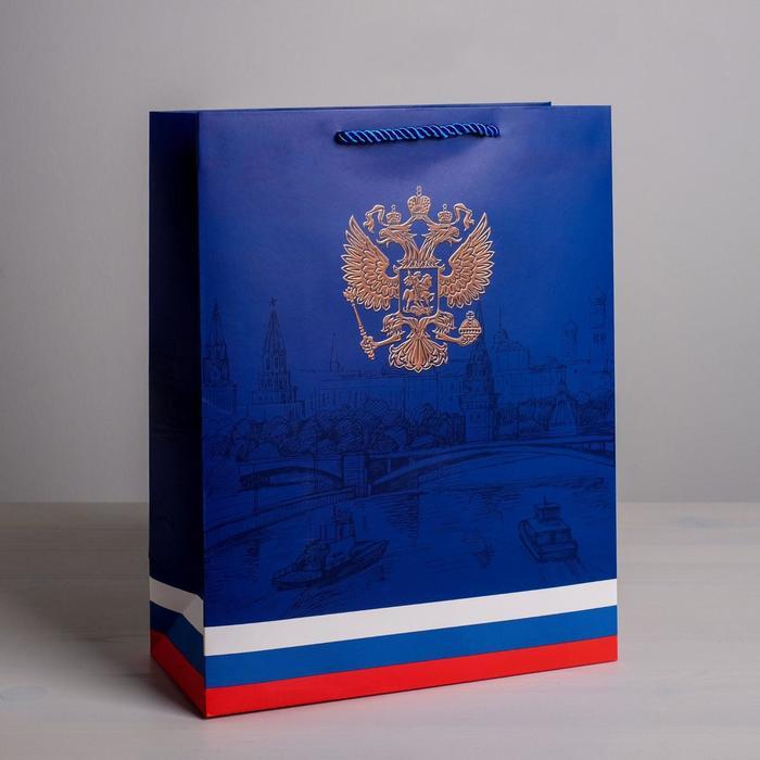 Пакет вертикальный «Могучая страна», 25 × 32 × 12 см