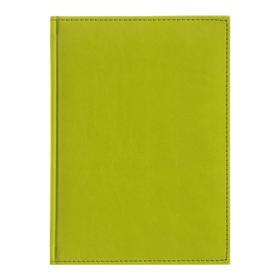 Ежедневник датированный 2020 г, А5, 168 листов «Вивелла», искусственная кожа, перфорация углов, ляссе, салатовый Ош