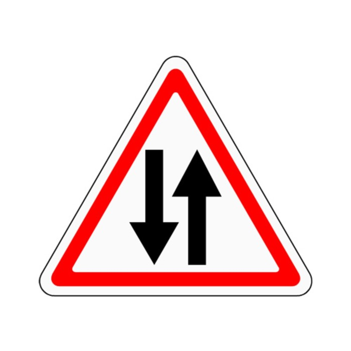 Знак дорожный 1.21 «Двустороннее движение»