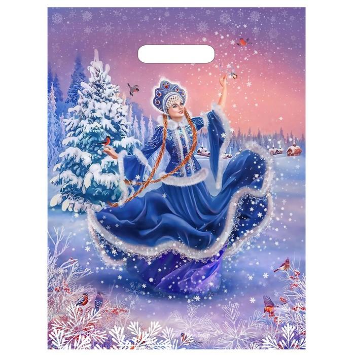 """Пакет """"Танец Снегурочки"""", полиэтиленовый с вырубной ручкой, 40 х 31 см, 60 мкм - фото 308291939"""
