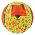 "Ball basketball ""foxes"", size 3, weight 280 gr"