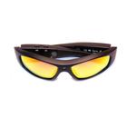 Очки цифровые X-TRY XTG205 HD Phoenix Polarized