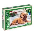 Пазл «Красивый щенок», 260 элементов