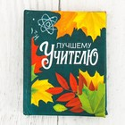 "Mini-book ""Teacher"", 48 pages"