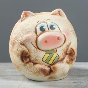 "Копилка ""Свинка Шарик"", под шамот, микс"