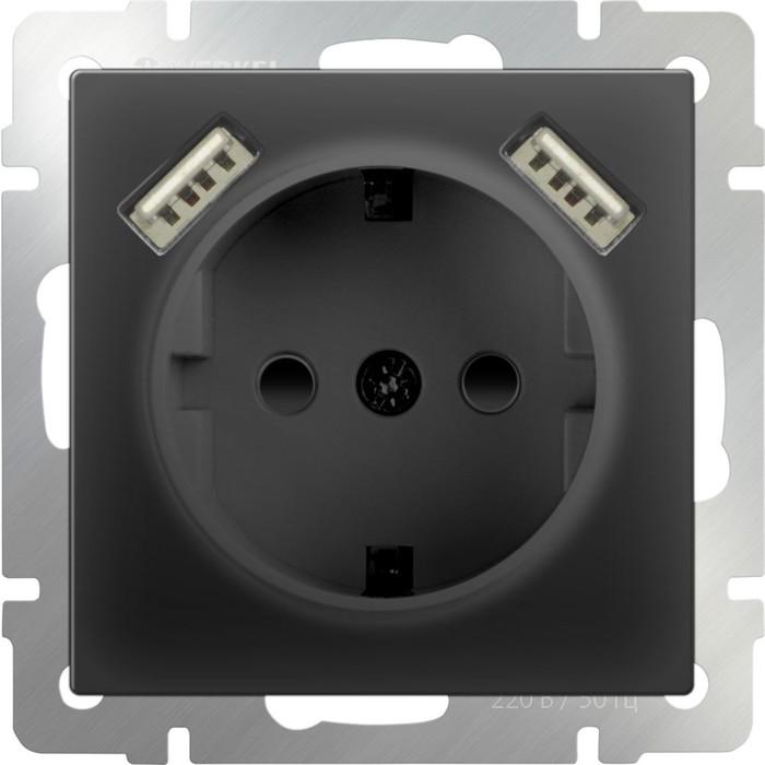 Розетка с заземлением, шторками и USBх2  WL08-SKGS-USBx2-IP20, цвет черный