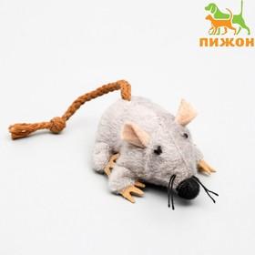 """Игрушка для кошек """"Грызун"""", 8,5 см"""