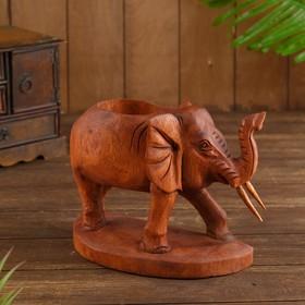 "{{photo.Alt || photo.Description || 'Подставка под бутылки дерево ""Слон"" 22х12х20 см'}}"