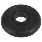 Диск d 51 2,5 кг TITAN-PROFY черный, ДТПЧ 51/2,5