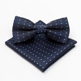 Набор мужской: галстук-бабочка 12 х 6 см, платок 21 х 21 см, п/э