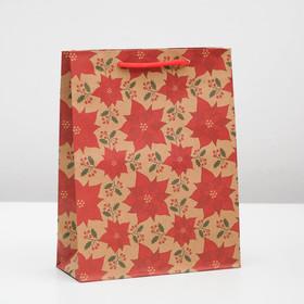 Package Kraft Carnation 19 x 24 x 8 cm