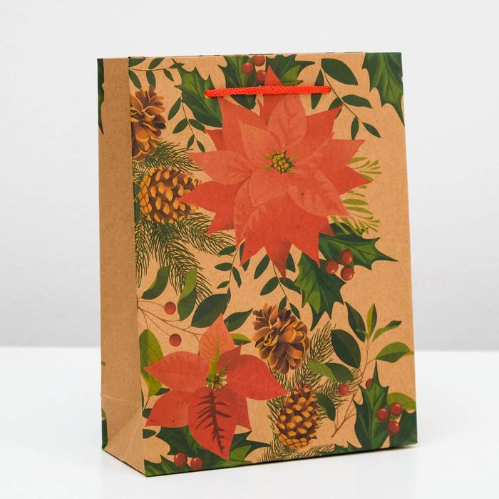 Пакет крафт «Корица», 15 х 20 х 6 см