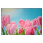 "Наклейка на кафельную плитку ""Розовые тюльпаны на фоне неба"" 60х90 см"