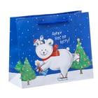 Пакет ламинированный горизонтальный «Приятных сюрпризов в Новом Году!», 12 × 15 × 5,5 см