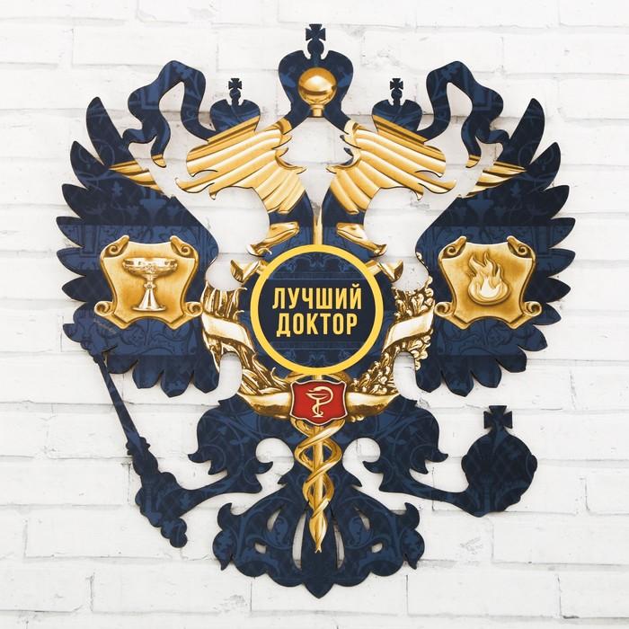 """Герб настенный """"Лучший доктор"""", 22,5 х 25 см"""