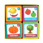 Набор мягких книжек-кубиков EVA «Окружающий мир», 4 шт. по 12 стр. - фото 105682195