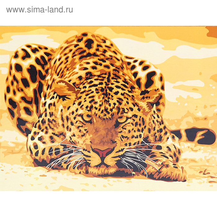 "Роспись по холсту ""Леопард"" по номерам с красками по 3 мл + кисти + инструкция + крепеж"