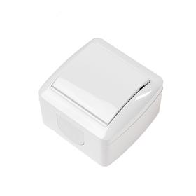 """Выключатель TDM """"Селигер"""", 10 А, IP44, 1 клавиша, открытый, белый"""