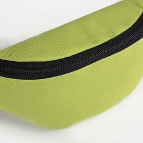 Сумка поясная, отдел на молнии, регулируемый ремень, цвет салатовый - фото 65704