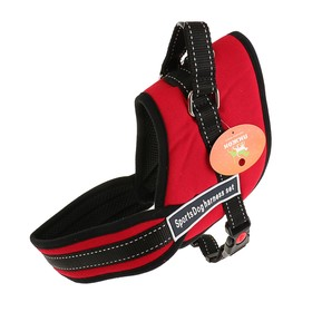 The harness with lining, size M (OSH 60, OG 62-76 cm) lanyard 2,5 cm red