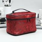 Cosmetic bag-trunk, division zipper, mirror, color Burgundy