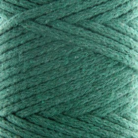 Cord for knitting without a core 100% cotton, width 3mm 100m / 250g (t. Green)