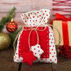 Мешок для подарков «Звёздочка», на завязках, 15×20 см, цвета МИКС - фото 8876367