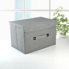 Короб для хранения с крышкой «Селика», 47×31×30 см, цвет серо-фиолетовый - фото 308331880