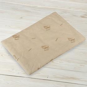 Подушка нестёганая для младенцев «Сладкий сон», размер 40×60 см, шерсть, поплин