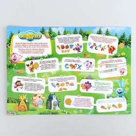 Игровой плакат со скретч-слоем СМЕШАРИКИ 'День рожденья Нюши' Ош