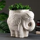 "Фигурное кашпо ""Слон средний"" состаренный 35х22х36см"
