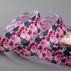 Лента репсовая «Цветник», 25мм, 18±1м, разноцветная