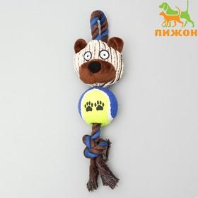 """Игрушка для собак 3-в-1 """"Медведь"""": канатная, мягкая с пищалкой, войлочный мяч, 30 см"""
