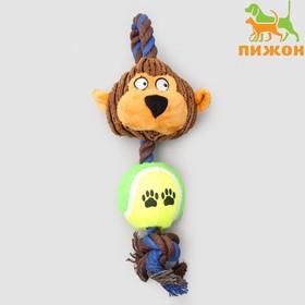 """Игрушка для собак 3-в-1 """"Обезьяна"""": канатная, мягкая с пищалкой, войлочный мяч, 30 см"""