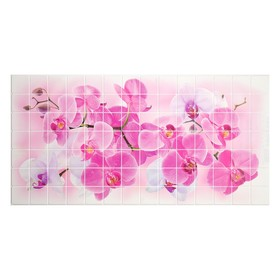 Панель ПВХ Мозаика Орхидея Розея 480*955*0,2мм Ош