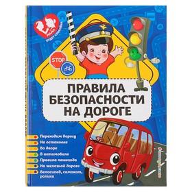 МамСпок. Правила безопасности на дороге. Василюк Ю.С. Ош