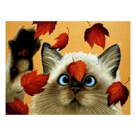 Картина стразами 'Кот и осенние листья' Ош